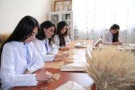 Taxıl və Paxlalı birkilər laboratoriyası