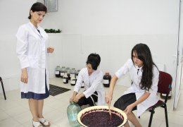Şərabçılıq laboratoriyası