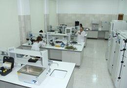 Bitki klinikası
